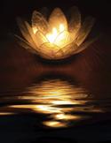 Holy Fire Reiki - Preparing for the New Consciousness