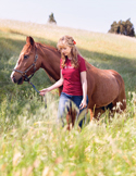 Reiki with Horses: They are the Teachers