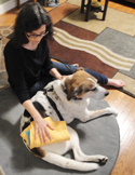 Animals in Pain, Reiki to the Rescue