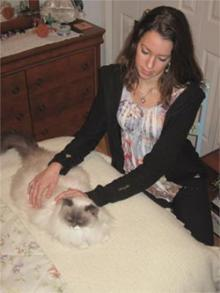 Our cat Clio receives Reiki from daughter Danielle.